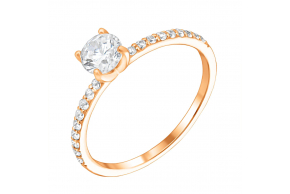 Золотое кольцо (1k135/01b)